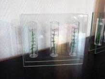 Vase Rectangulaire En Verre Composé De 3 Tubes