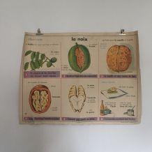 Affiche vintage mdi