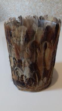 Photophore plumes brun