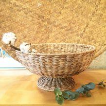 Coupe en jacinthe d'eau