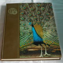 Encyclopedie Universelle Des Animaux. Royaume Des Animaux
